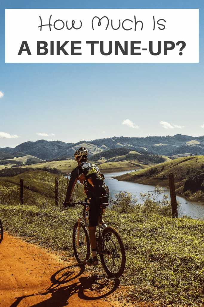 how much is a bike tune-up